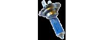 Ampoules xénon lumière du jour Daylight homologuées Vega® 12V